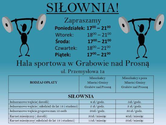 - silownia!plakat_na_stronke_5.11.2015.jpg
