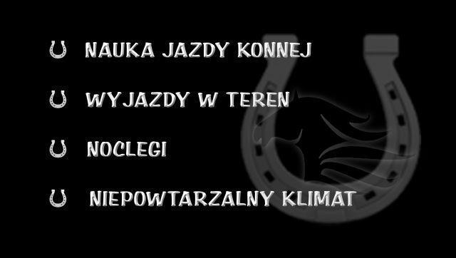 - stajnie_siekierzyn_tyl_copy_2.jpg